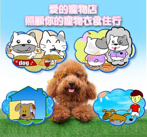 愛的寵物店 Honey Pet Shop (西營盤第1分店) -