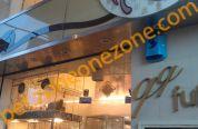 QQ Fuku 超小型犬專門店