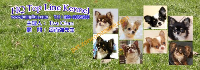 HQ TOP LINE KENNEL -