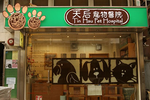 天后寵物醫院 Tin Hau Pet Hospital -
