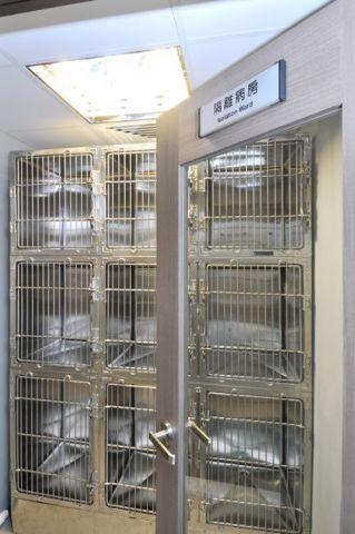 博愛動物醫院 Hospital of Dedication to Animals (西灣河店) -