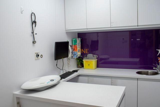 東區動物醫院 East Island Animal Hospital -