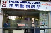 沙田動物診所 Shatin Animal Clinic