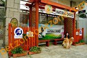寵物綠洲度假村 Pet Oasia
