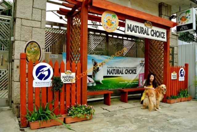 寵物綠洲度假村 Pet Oasia -