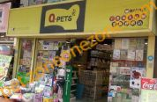 Q-PETS (荃灣大霸街分店)